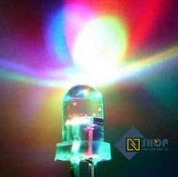 Led RGB 10mm 2 chân