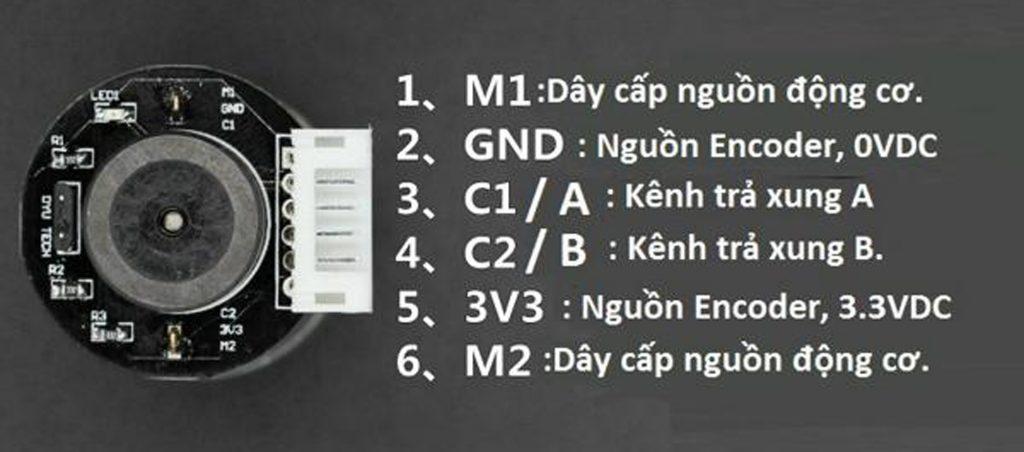 Sơ đồ đấu dây Động cơ DC giảm tốc GA25 Encoder 12rpm