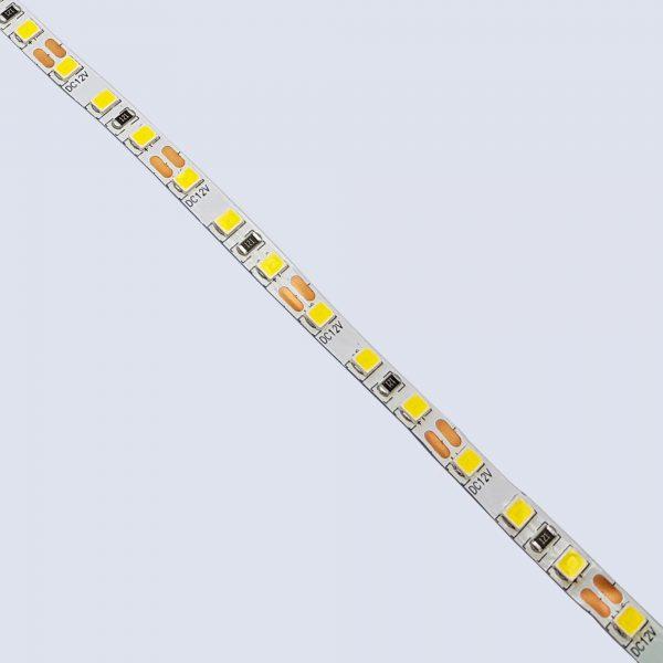 Led dây 2835 12V