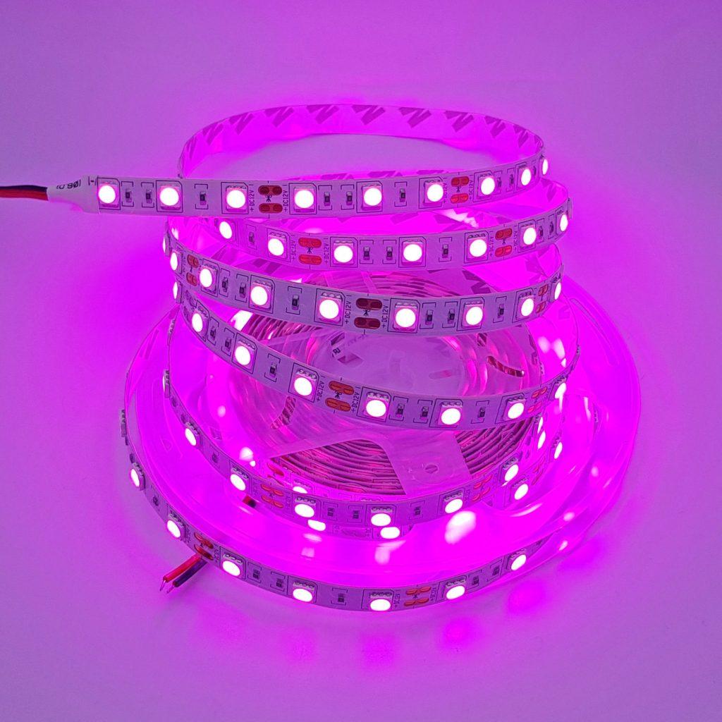 Led dây 5050 12V 1 mét 60 bóng không phủ epoxy màu hồng tím