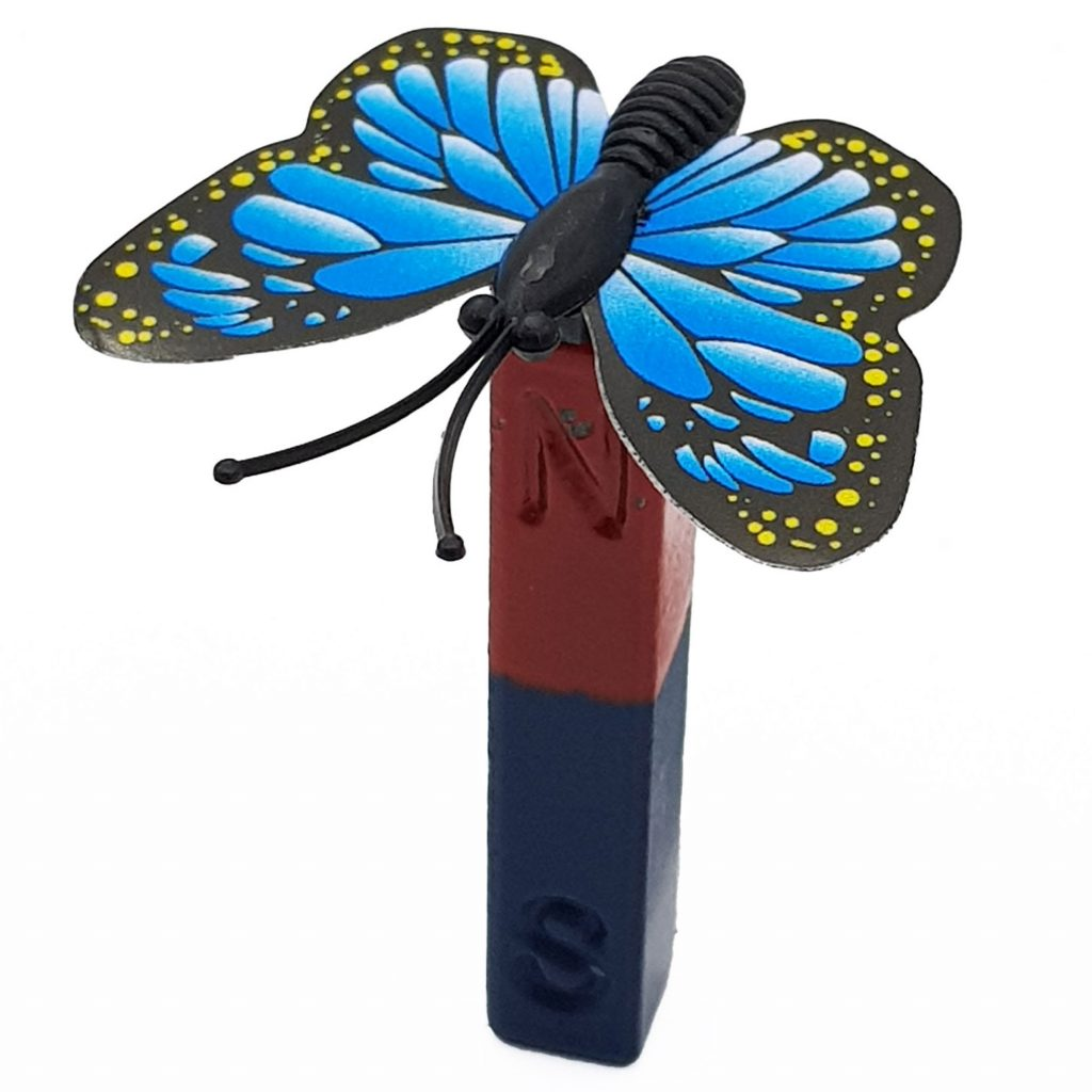 Thí nghiệm từ tính của bướm